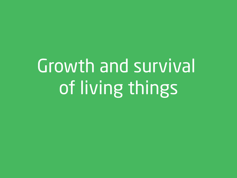 SubjectCoach | Biological Sciences: Growth and survival of living things 2